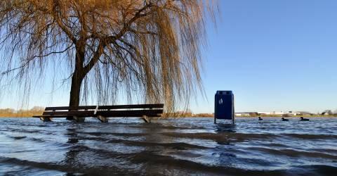Overstroming in het park waardoor bankjes boom en prullenbak in het water staan